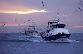 Denizlerde av yasağı kalktı.!